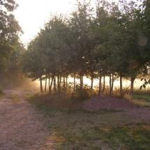 ochtendgloren-Natuurcamping-groningen-fleremaheerd