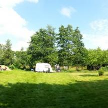 Zonnig veld - Natuurcamping Groningen Fleremaheerd